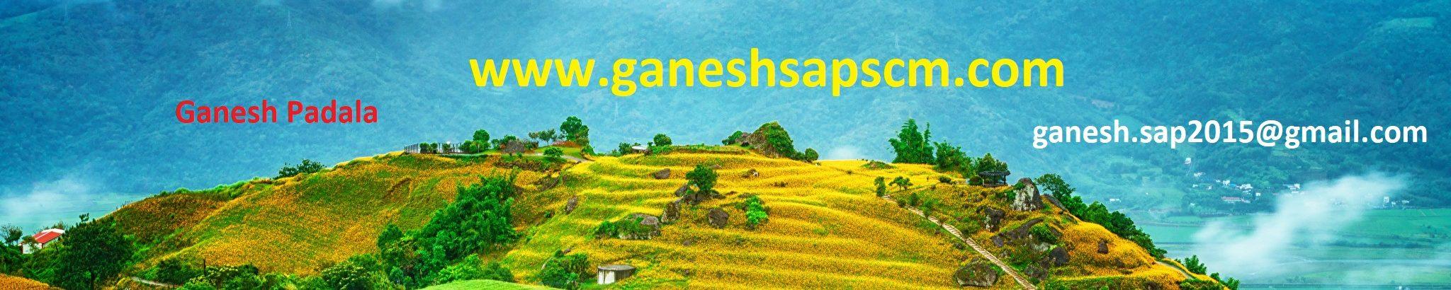 GANESH SAP SCM