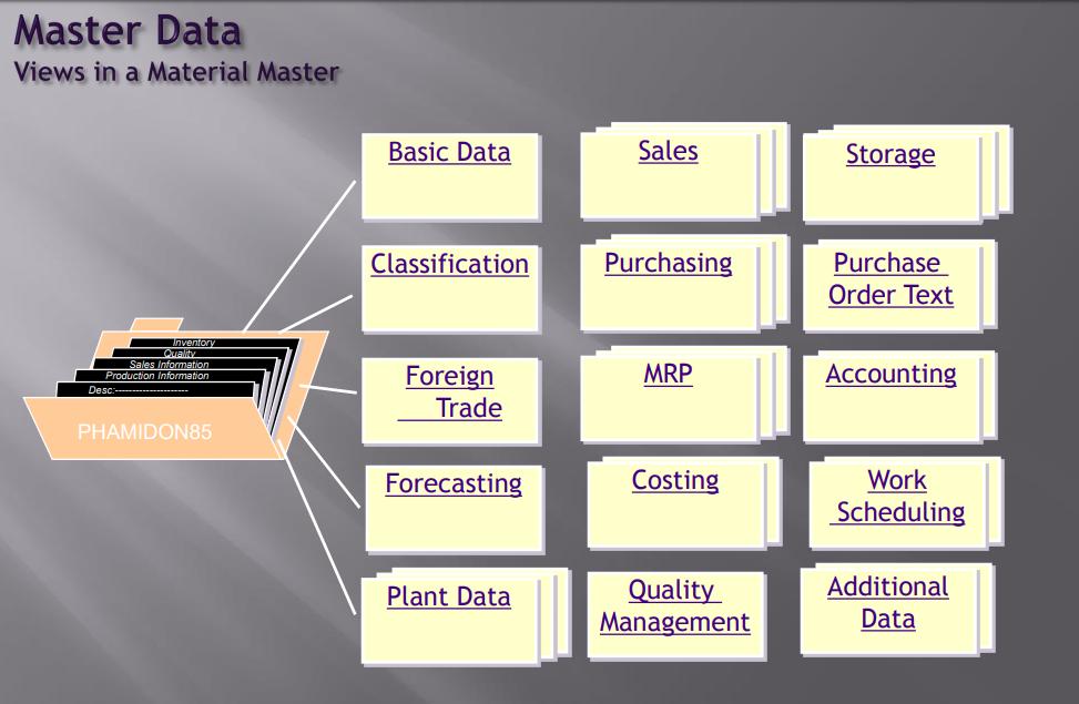 View Master Data Sap